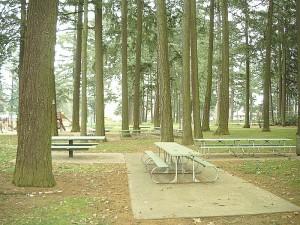 Real Estate Mount Scott Park
